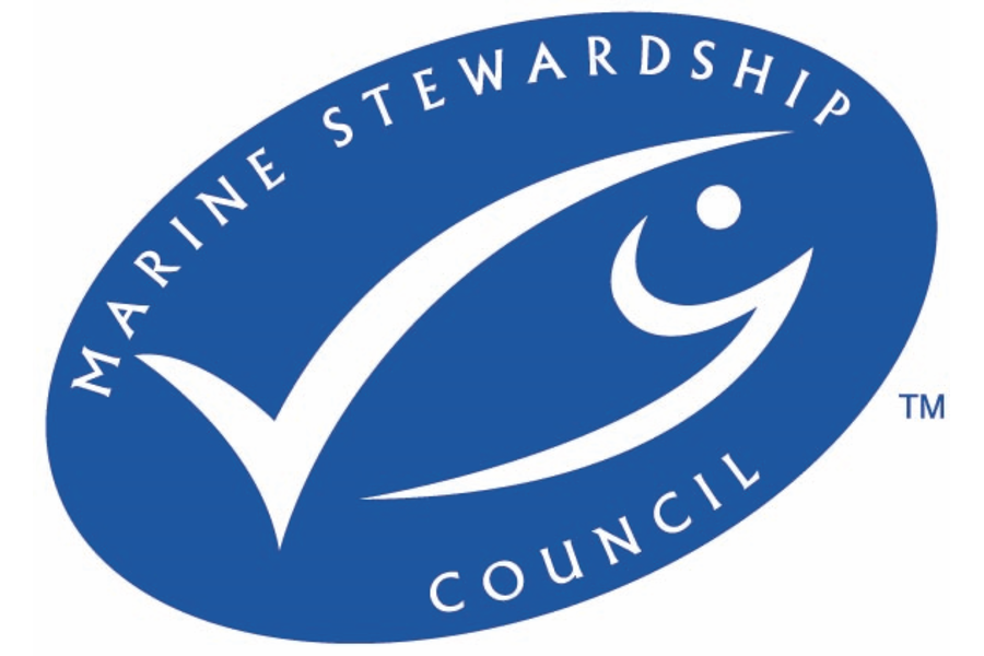 Marine Stewardship Council organisation logo