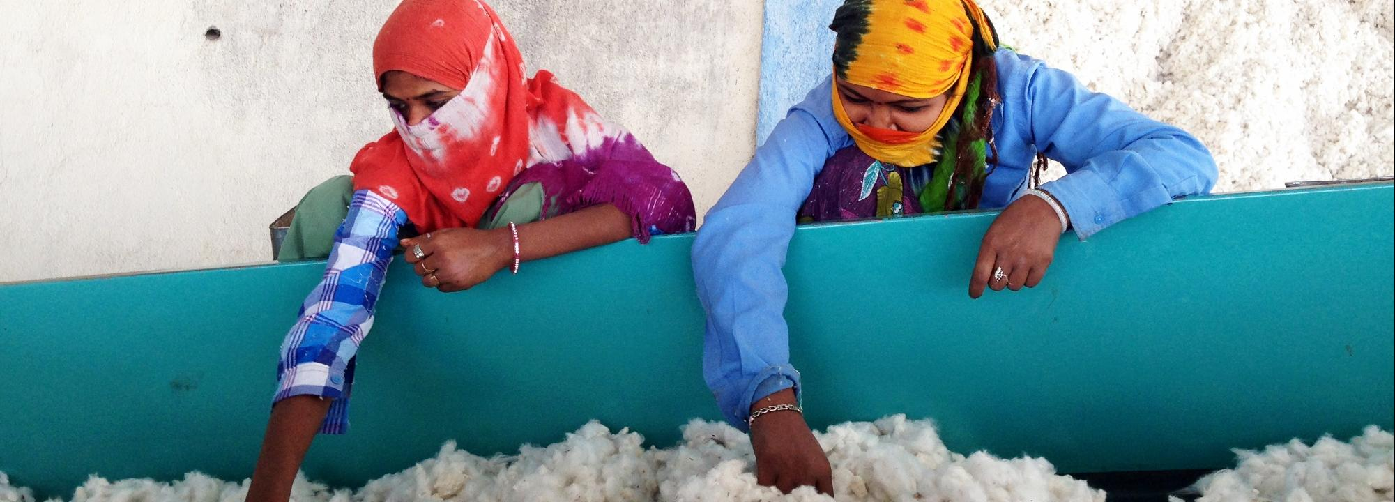 Cotton workers, India © Scott Exo, Better Cotton Initiative