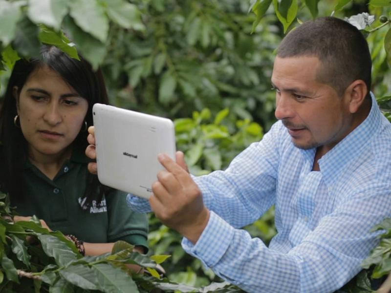 Farmer Training App © Rainforest Alliance