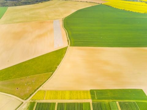 Aerial view of fields © Kletr, Adobe stock
