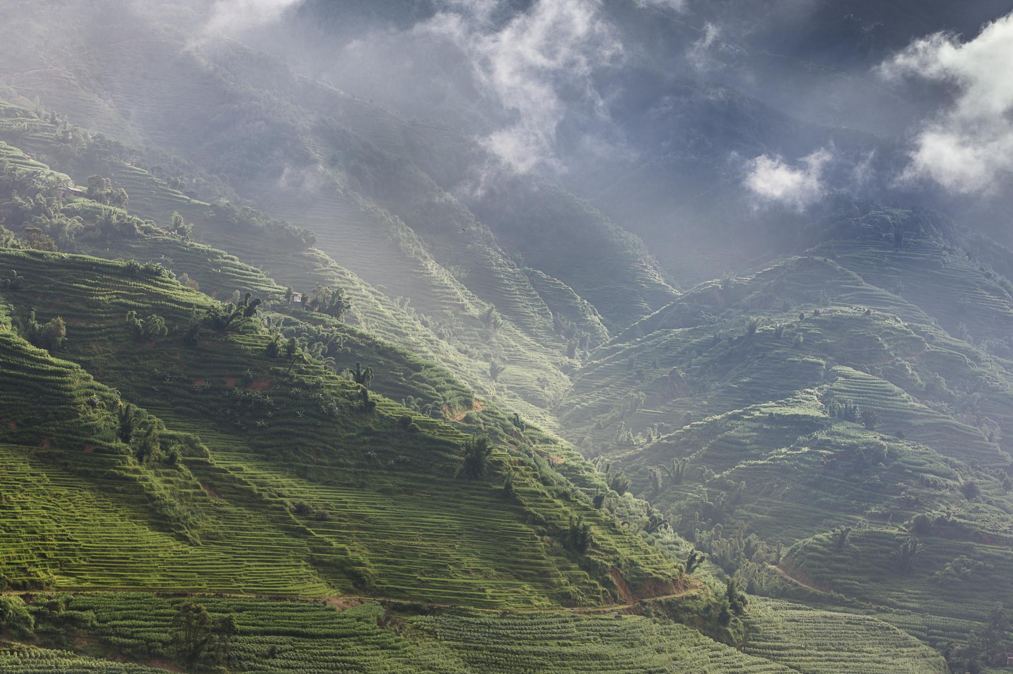 Terraced hillsides in Yunnan province courtesy Rainforest Alliance